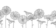 Horizontal Seamless Pattern With Outline Gerbera Or Gerber Flower In Black On The White Background.
