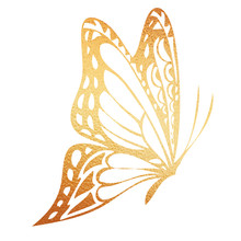 Golden Butterfly Hand-drawn Illustration On A White Background