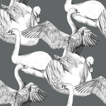 Seamless Pattern With Birds Swans. Pencil Drawing White Swans. Hand-drawn Beautiful Birds. Vintage Engraving. Black And White. Template For Design Of Paper, Textiles, Wallpaper.