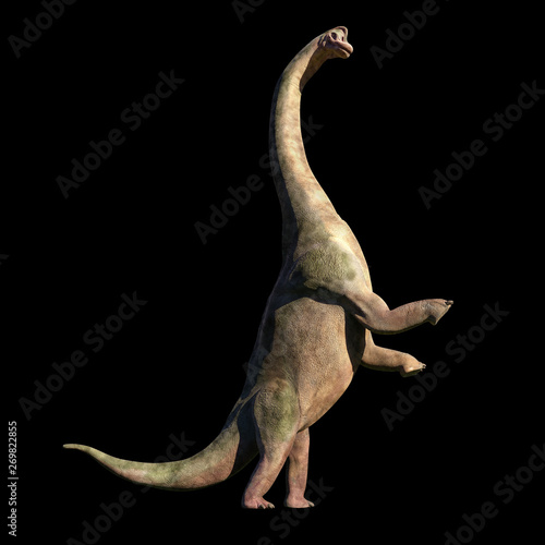 Obraz na plátně  Brachiosaurus altithorax from the Late Jurassic in action (3d illustration isola