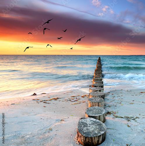 Poster Pale violet Sandstrand und unendliches Meer