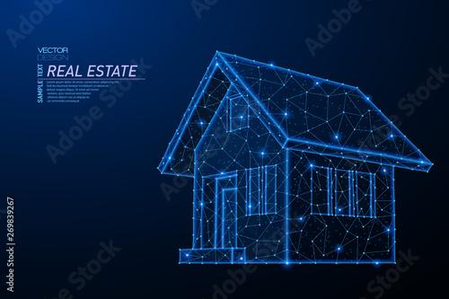 Abstract polygonal light design of house building symbol Fototapet