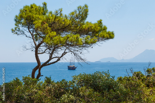 Cuadros en Lienzo brig in the sea sailboat