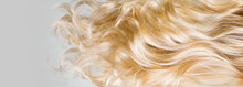 Hair. Beautiful Healthy Long Curly Blond Hair Closeup Texture. Dyed Wavy Blonde Hair Background. Coloring Concept. Haircare