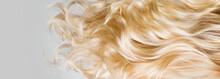 Hair. Beautiful Healthy Long C...