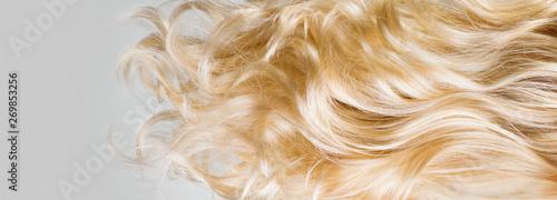 Fotografia Hair