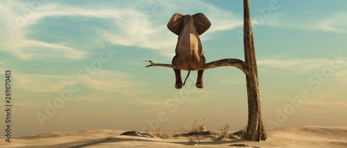 Spoed Foto op Canvas Ontspanning Lonely elephant on tree