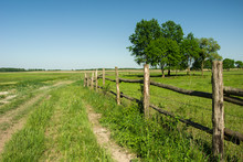 Wooden Fence On A Green Meadow, Trees And Blue Sky
