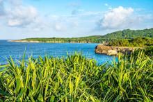 Scenic Caribbean Island Coasta...