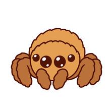 Cute Cartoon Spider