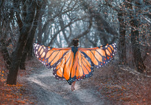 A Bright, Positive, Sunny Monarch Butterfly, With Huge Wings, Walks In A Dark Gray Forest. Art Photo From The Back Without Face. Mysterious Fairy Takes Off Into The Air. Creative Colors