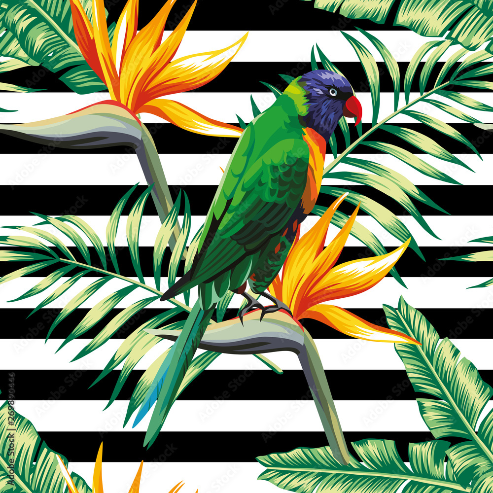 parrots exotic floral seamless background