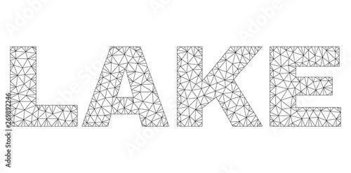Mesh vector LAKE text Wallpaper Mural