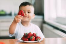 Charming Child In White T-shirt Eating Fresh Homemade Strawberries