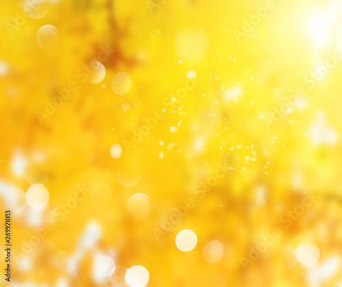 Photo sur Aluminium Melon Vibrant fall foliage