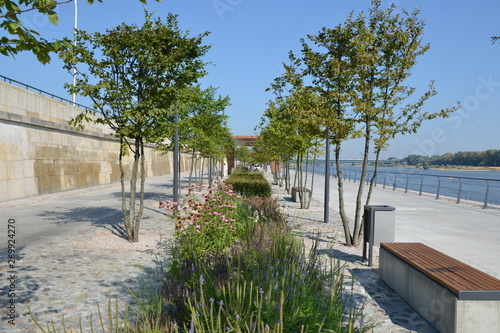 Fotografiet Green plants, trees and flowers on the Vistulan Boulevards at the western side o