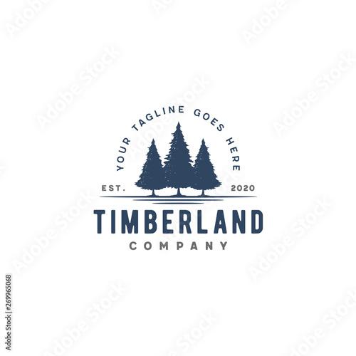 Fotografija  Retro Vintage Evergreen, Pines, Spruce, Cedar trees logo