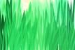 Leinwandbild Motiv green grass pattern for banner, vibrant summer design