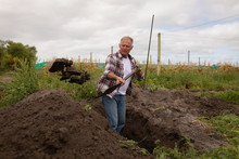 Senior Farmer With Sholve Digging In The Farm