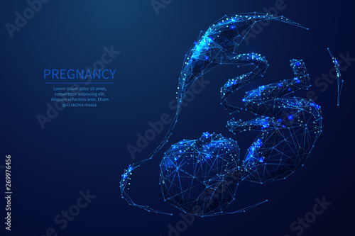 Photo  Pregnancy low poly wireframe illustration