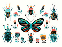 Insects Collection With Differ...