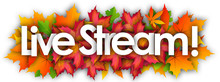 Live Stream Word And Autumn Leaves Background