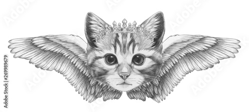 Photo  Portrait of Cat with wings. Hand-drawn illustration.