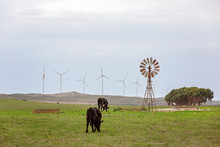 The Old And New In Harnessing Wind Power