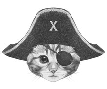 Portrait Of Cat With Pirate Ha...