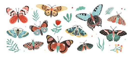 Zbirka elegantnih egzotičnih leptira i moljaca izoliranih na bijeloj pozadini. Skup tropskih letećih insekata sa šarenim krilima. Snop dekorativnih elemenata dizajna. Ravna vektorska ilustracija.