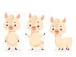 Alpaca cartoon character vector illustration SET. Cute and funny Mascot