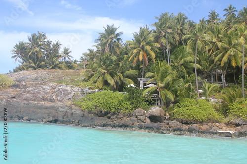 Fototapety, obrazy: private island beach seychelles palm coconut sand sun