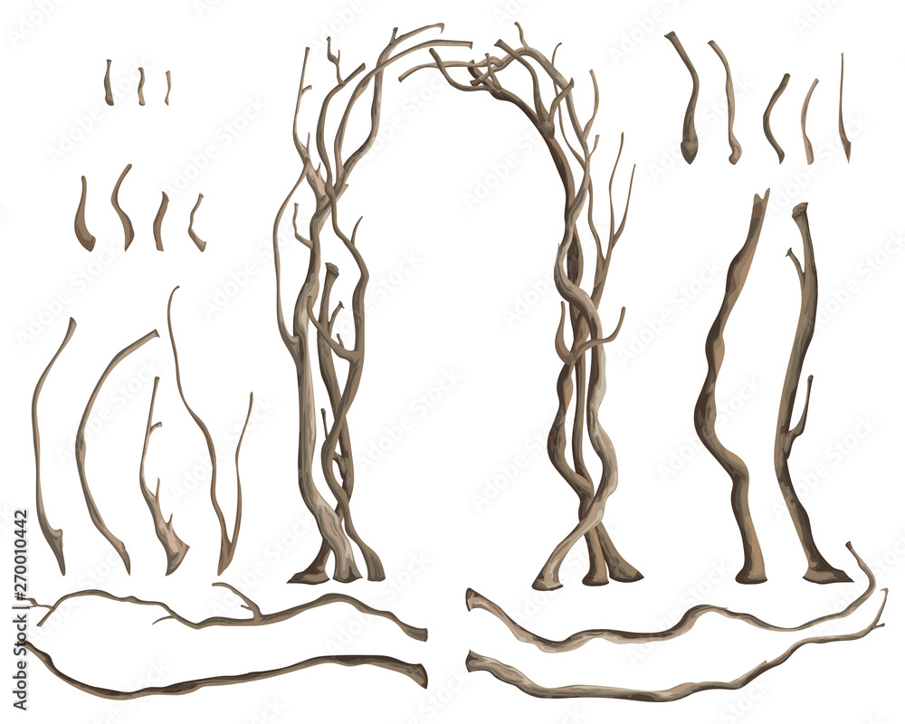 Fototapety, obrazy: Rustic arch with tree branches and isolated design elements on white background. Vector illustration in watercolor style