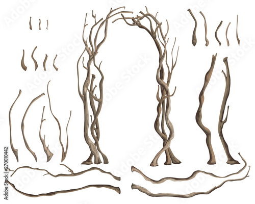 Slika na platnu Rustic arch with tree branches and isolated design elements on white background
