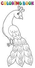 Coloring Book Peacock Theme 2