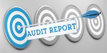 Audit Report / Audit Als Konzept