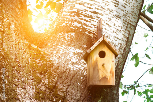 Tableau sur Toile house for the birds on the tree