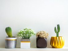 Beautiful Various Geometric Concrete Planters With Cactus, Flowers And Succulent Plant. Painted Concrete Pots For Home Decoration