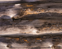 Old Wooden Boards With Nails
