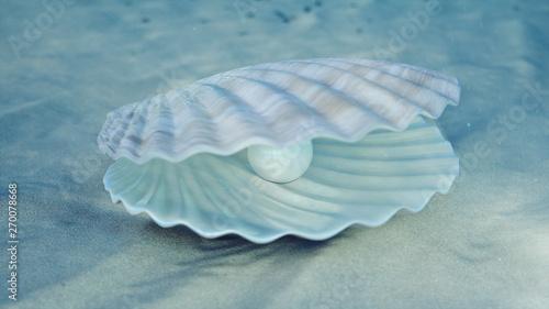 Obraz na plátně  Mother of pearls underwater