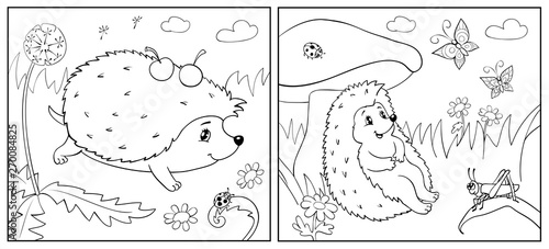 Coloring Book. Illustration of hedgehog and Insect for Children. Tableau sur Toile