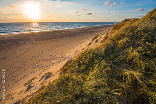 Poster Cote North sea beach, Jutland coast in Denmark