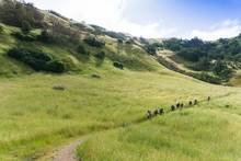 Group Of Backpackers Hiking Th...
