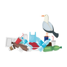 Seagull With Plastic And Disposables Products