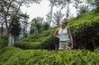 Beautiful yound woman stands in tea plantation and smiles