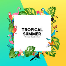 Summer Tropical Border Design ...