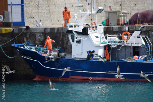 Paisaje de un puerto pesquero con marineros, pescadores, sus barcos y gaviotas hambrientas.