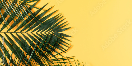Summer modern composition.Tropical green leaves of palm tree on pastel yellow background. Flat lay, top view, copy space
