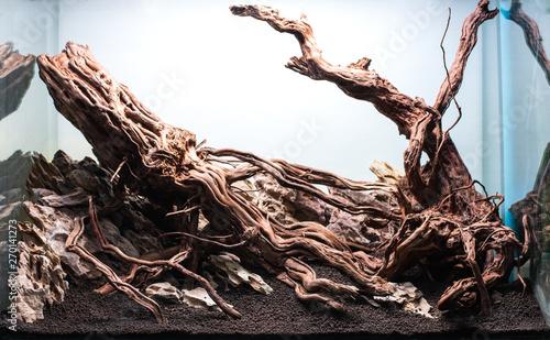 Foto auf Gartenposter Weiß rock and driftwood hardscape arrangement .