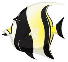Vector Illustration Of A Moorish Idol Tropical Fish.